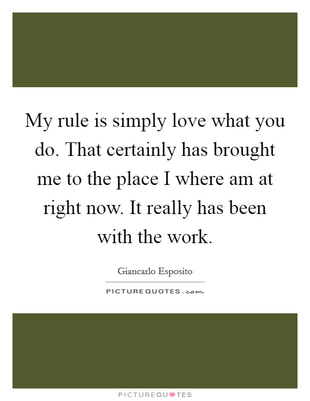 My rule is simply love what you do. That certainly has brought me to the place I where am at right now. It really has been with the work Picture Quote #1