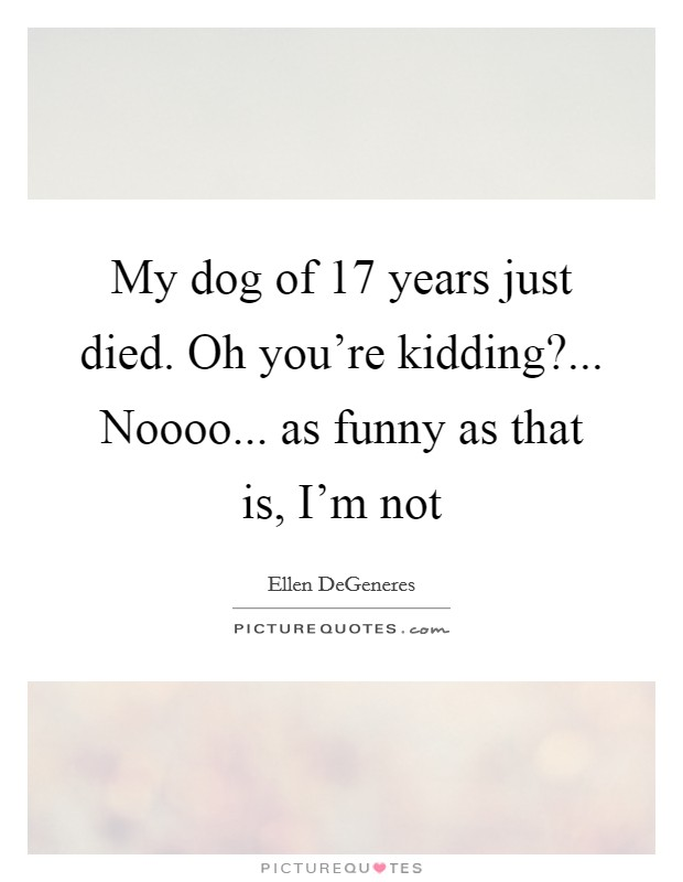 My dog of 17 years just died. Oh you're kidding?... Noooo... as funny as that is, I'm not Picture Quote #1