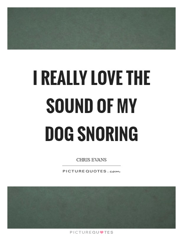 I really love the sound of my dog snoring Picture Quote #1