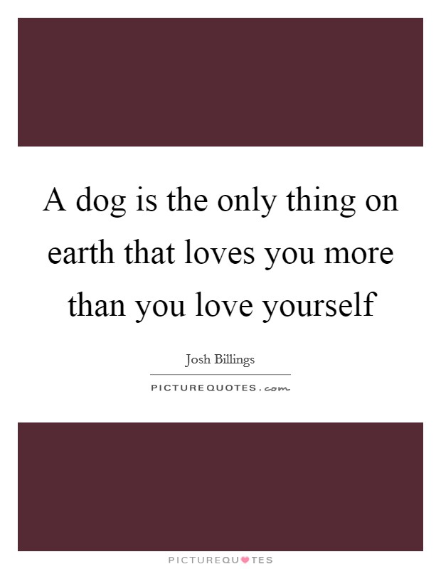 A dog is the only thing on earth that loves you more than you love yourself Picture Quote #1