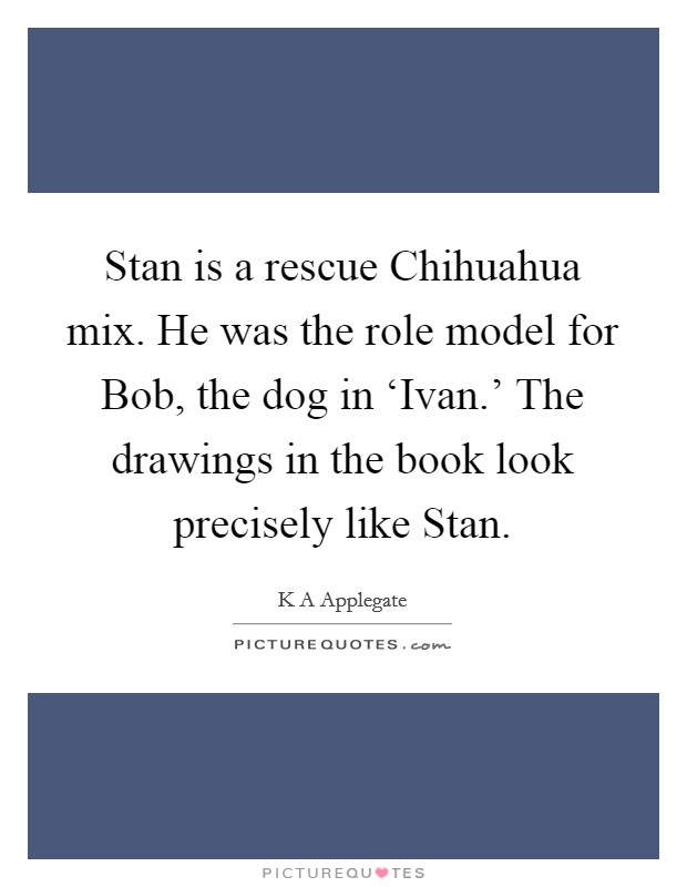 Stan is a rescue Chihuahua mix. He was the role model for Bob, the dog in 'Ivan.' The drawings in the book look precisely like Stan Picture Quote #1