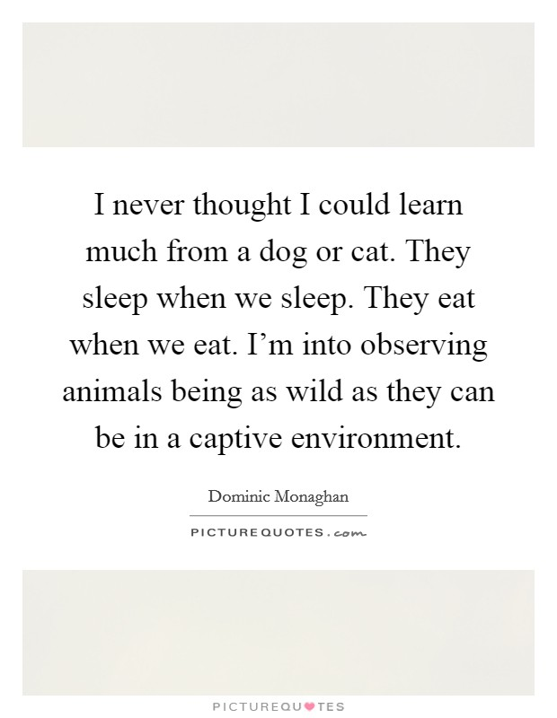 I never thought I could learn much from a dog or cat. They sleep when we sleep. They eat when we eat. I'm into observing animals being as wild as they can be in a captive environment Picture Quote #1