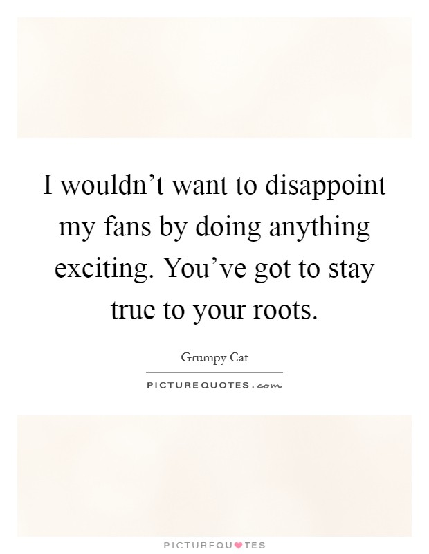 I wouldn't want to disappoint my fans by doing anything exciting. You've got to stay true to your roots Picture Quote #1
