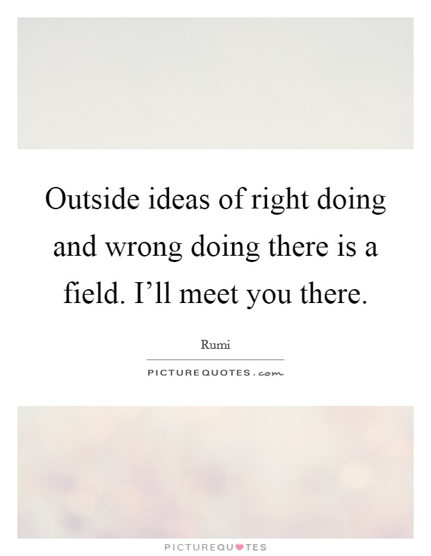 Outside ideas of right doing and wrong doing there is a field. I'll meet you there Picture Quote #1