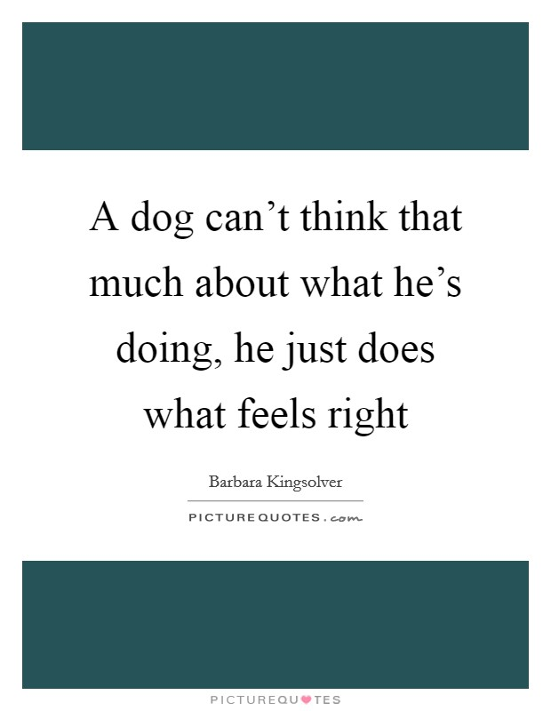 A dog can't think that much about what he's doing, he just does what feels right Picture Quote #1