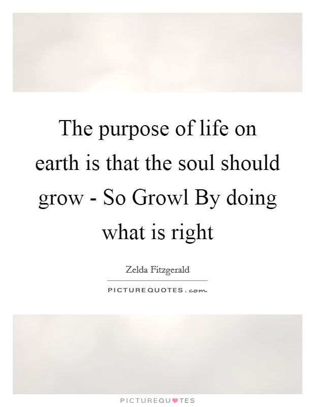 The purpose of life on earth is that the soul should grow - So Growl By doing what is right Picture Quote #1