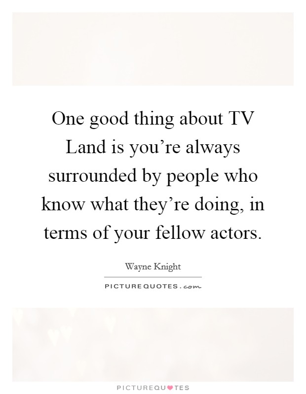 One good thing about TV Land is you're always surrounded by people who know what they're doing, in terms of your fellow actors Picture Quote #1
