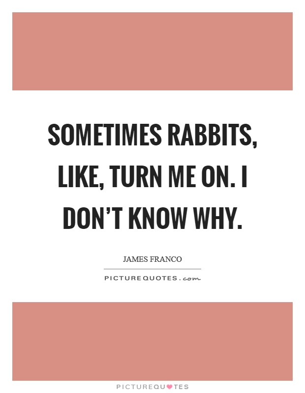 Sometimes rabbits, like, turn me on. I don't know why Picture Quote #1