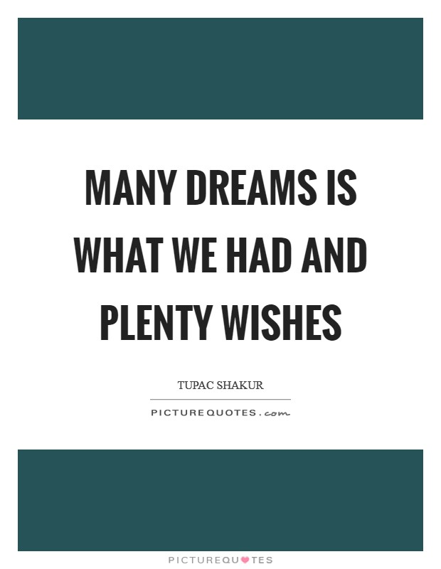 Many dreams is what we had and plenty wishes Picture Quote #1