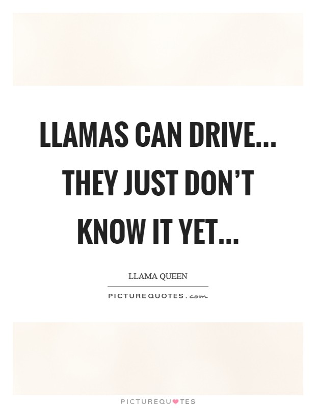 Llamas can drive... they just don't know it yet Picture Quote #1