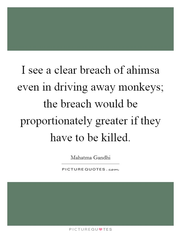 I see a clear breach of ahimsa even in driving away monkeys; the breach would be proportionately greater if they have to be killed Picture Quote #1