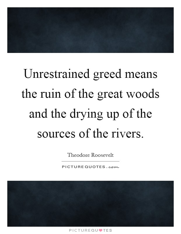 Unrestrained greed means the ruin of the great woods and the drying up of the sources of the rivers Picture Quote #1