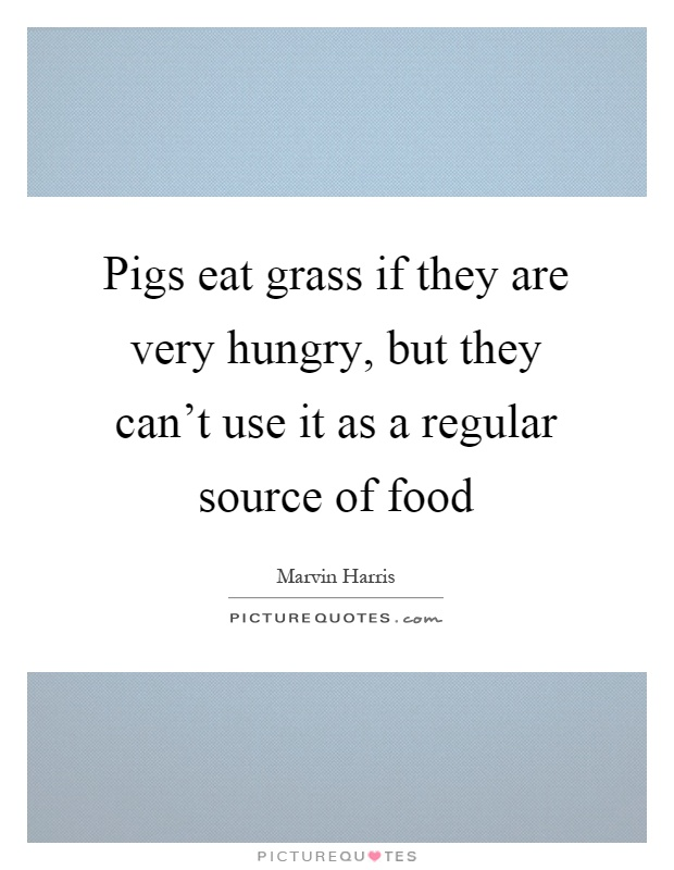 Pigs eat grass if they are very hungry, but they can't use it as a regular source of food Picture Quote #1