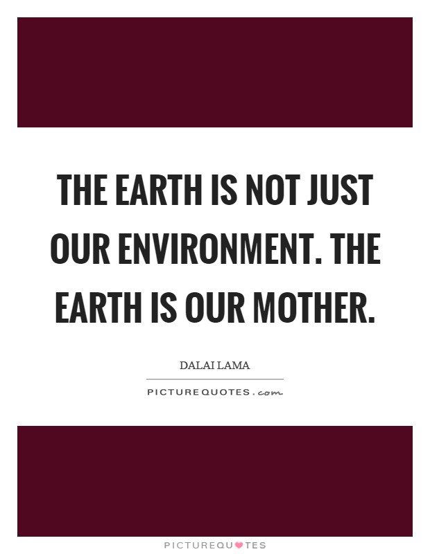 The earth is not just our environment. The earth is our mother Picture Quote #1