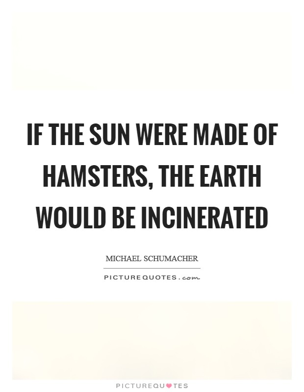 If the sun were made of hamsters, the earth would be incinerated Picture Quote #1