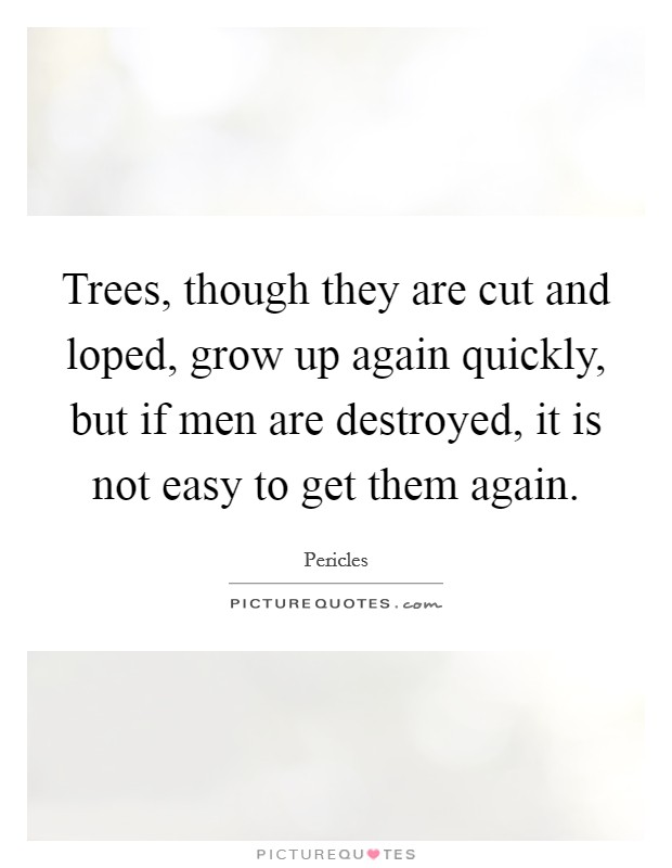 Trees, though they are cut and loped, grow up again quickly, but if men are destroyed, it is not easy to get them again. Picture Quote #1