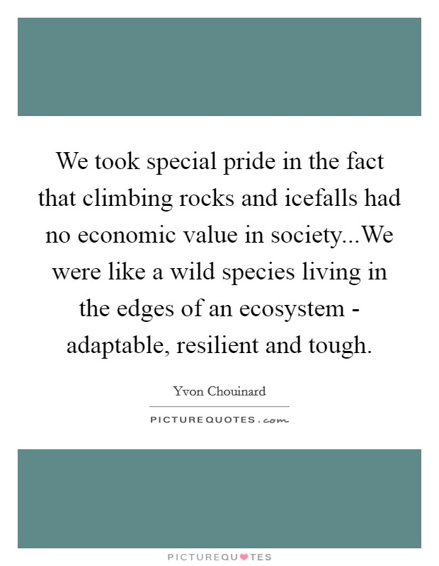 We took special pride in the fact that climbing rocks and icefalls had no economic value in society...We were like a wild species living in the edges of an ecosystem - adaptable, resilient and tough Picture Quote #1