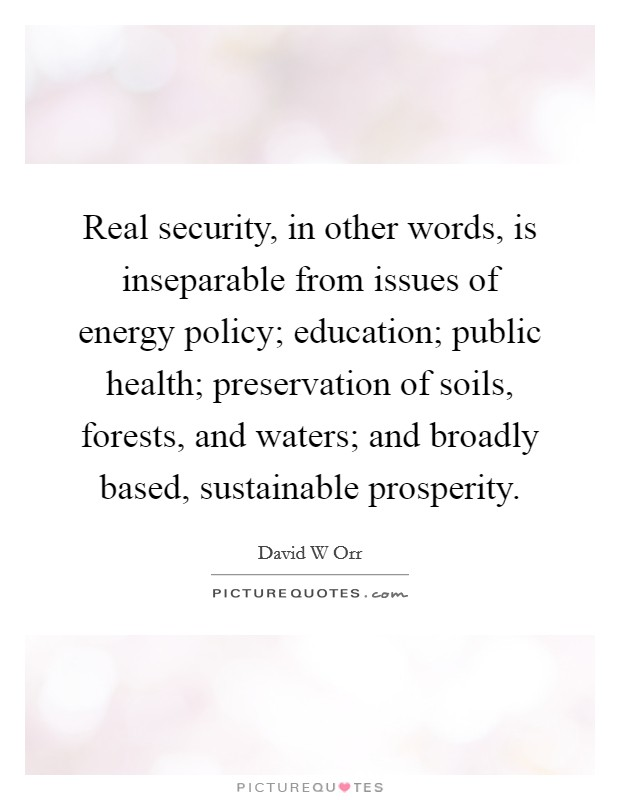 Real security, in other words, is inseparable from issues of energy policy; education; public health; preservation of soils, forests, and waters; and broadly based, sustainable prosperity. Picture Quote #1
