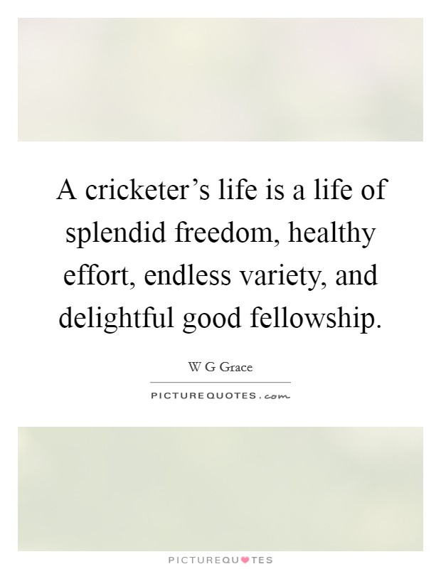 A cricketer's life is a life of splendid freedom, healthy effort, endless variety, and delightful good fellowship Picture Quote #1