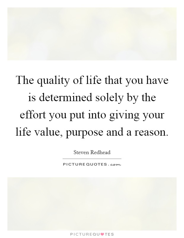 The quality of life that you have is determined solely by the effort you put into giving your life value, purpose and a reason Picture Quote #1