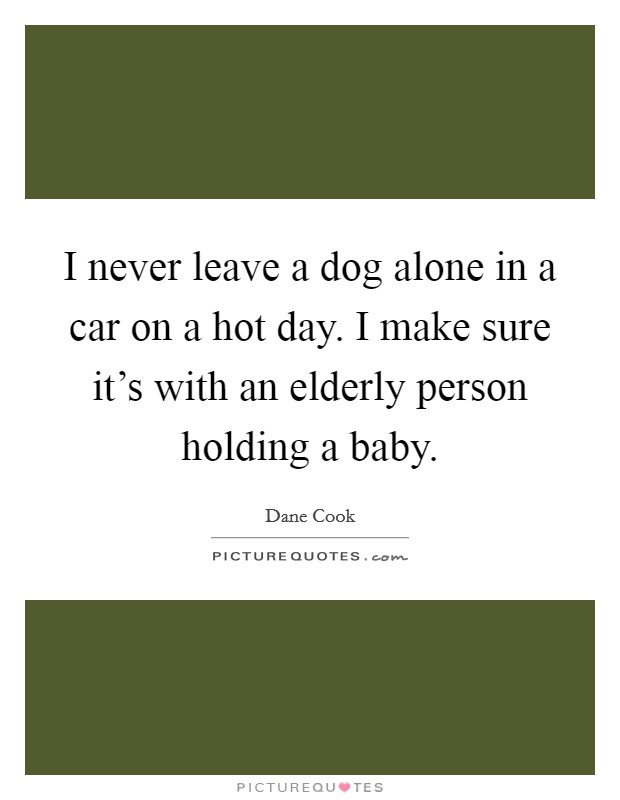 I never leave a dog alone in a car on a hot day. I make sure it's with an elderly person holding a baby Picture Quote #1
