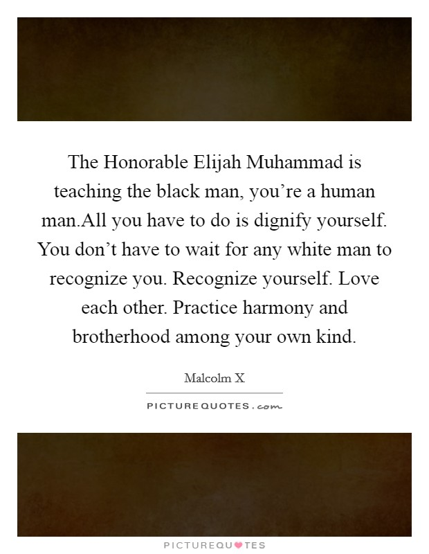 The Honorable Elijah Muhammad is teaching the black man, you're a human man.All you have to do is dignify yourself. You don't have to wait for any white man to recognize you. Recognize yourself. Love each other. Practice harmony and brotherhood among your own kind Picture Quote #1