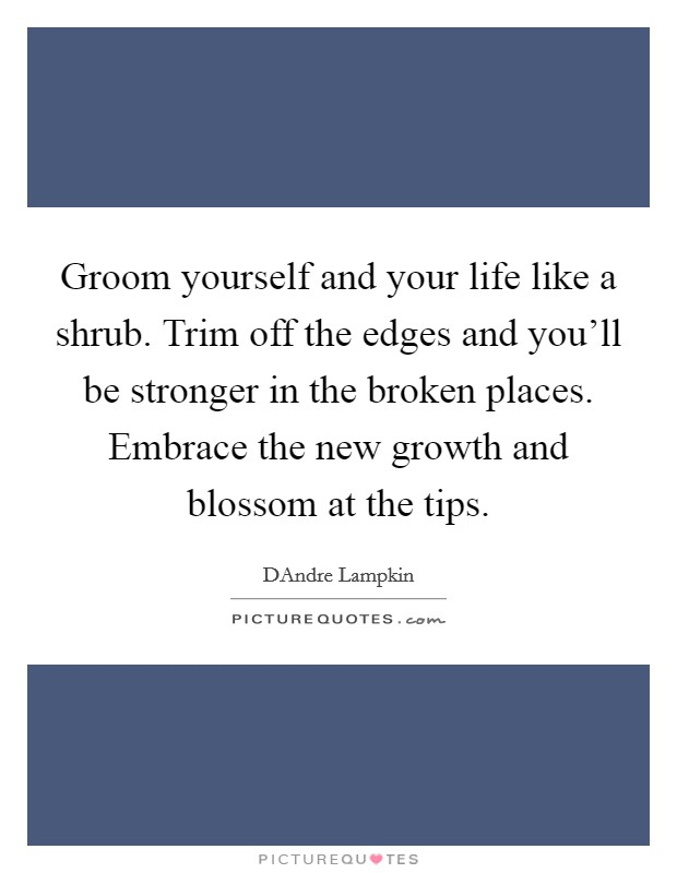 Groom yourself and your life like a shrub. Trim off the edges and you'll be stronger in the broken places. Embrace the new growth and blossom at the tips Picture Quote #1