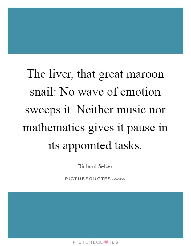The liver, that great maroon snail: No wave of emotion sweeps it. Neither music nor mathematics gives it pause in its appointed tasks Picture Quote #1