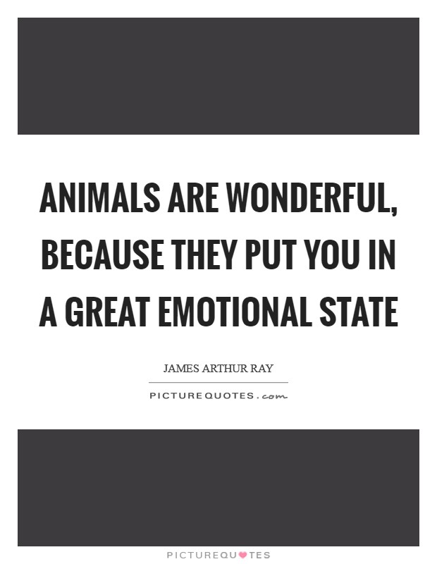 Animals are wonderful, because they put you in a great emotional state Picture Quote #1