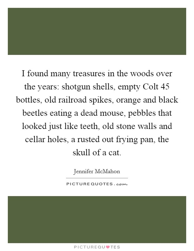 I found many treasures in the woods over the years: shotgun shells, empty Colt 45 bottles, old railroad spikes, orange and black beetles eating a dead mouse, pebbles that looked just like teeth, old stone walls and cellar holes, a rusted out frying pan, the skull of a cat Picture Quote #1