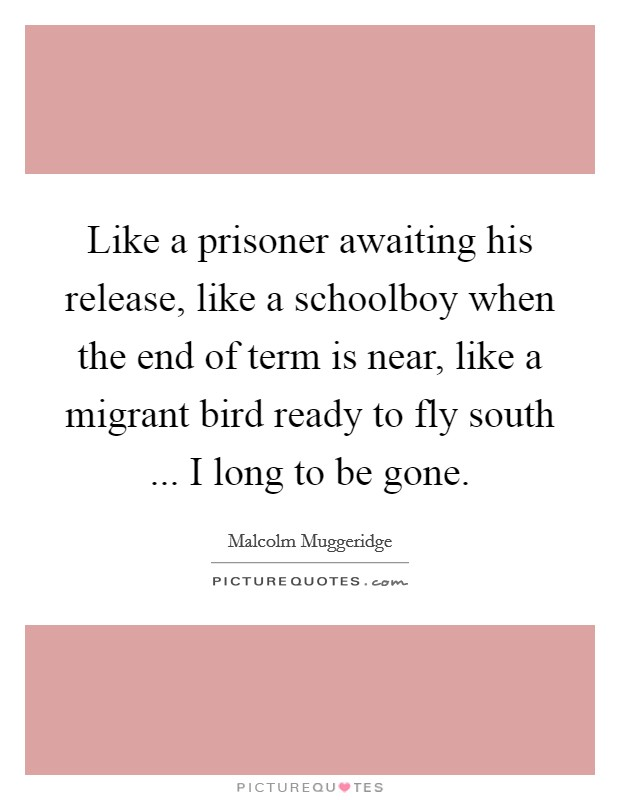 Like a prisoner awaiting his release, like a schoolboy when the end of term is near, like a migrant bird ready to fly south ... I long to be gone. Picture Quote #1