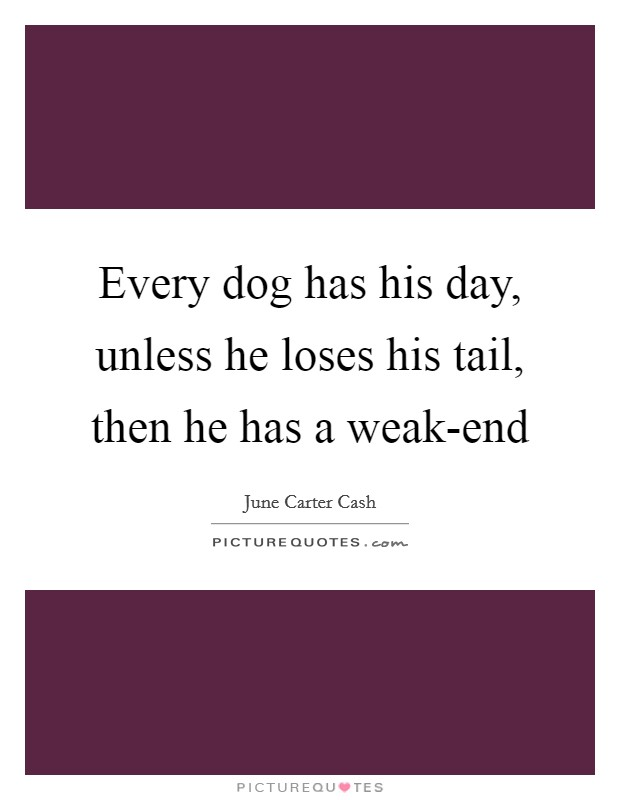 Every dog has his day, unless he loses his tail, then he has a weak-end Picture Quote #1