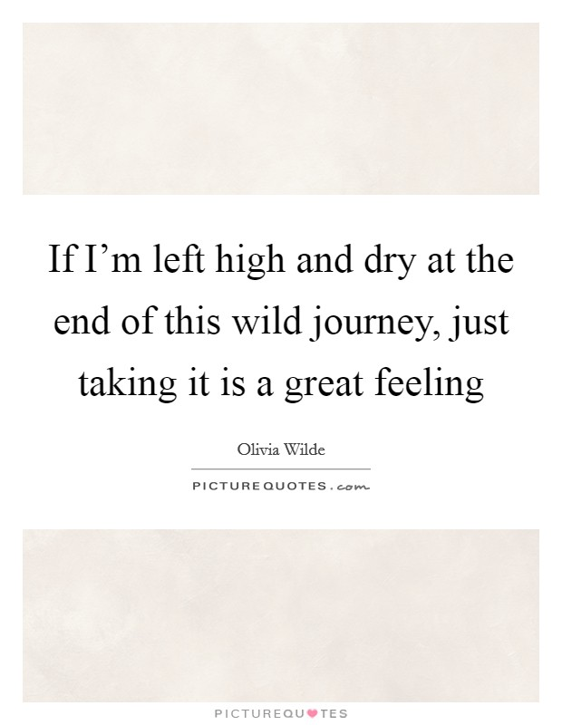 If I'm left high and dry at the end of this wild journey, just taking it is a great feeling Picture Quote #1