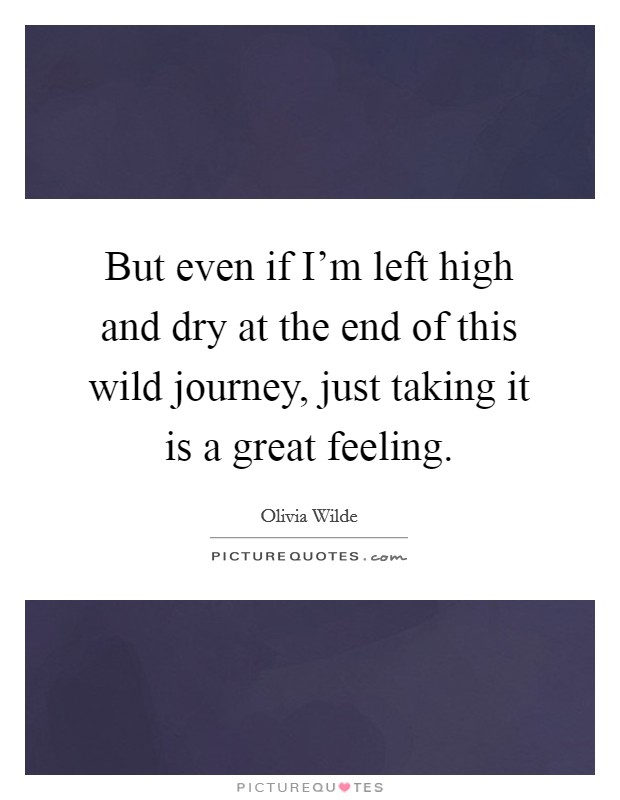 But even if I'm left high and dry at the end of this wild journey, just taking it is a great feeling Picture Quote #1