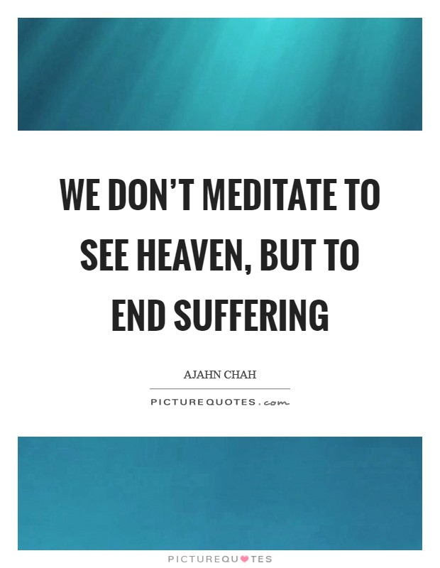 We don't meditate to see heaven, but to end suffering Picture Quote #1