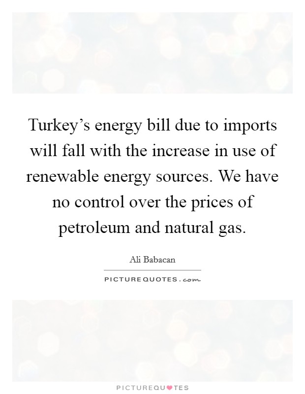 Turkey's energy bill due to imports will fall with the increase in use of renewable energy sources. We have no control over the prices of petroleum and natural gas Picture Quote #1