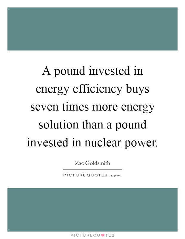 A pound invested in energy efficiency buys seven times more energy solution than a pound invested in nuclear power Picture Quote #1