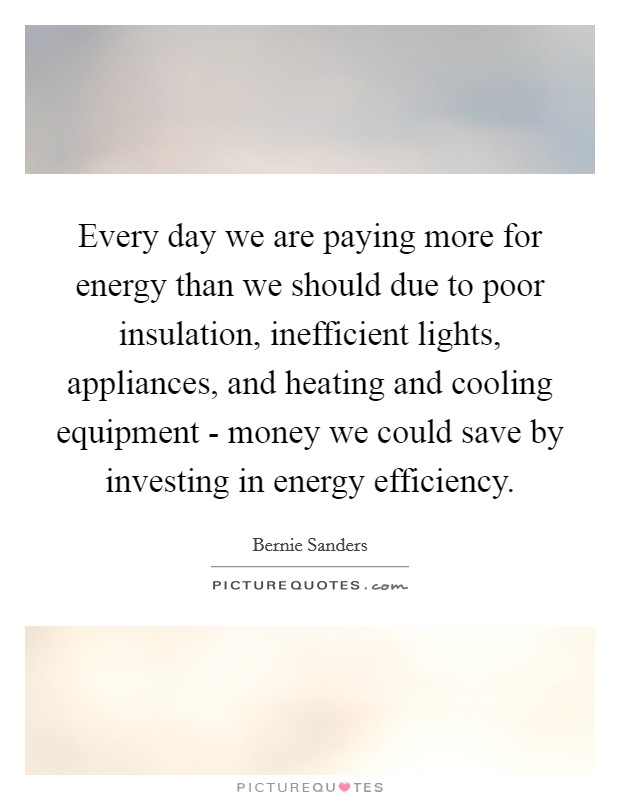 Every day we are paying more for energy than we should due to poor insulation, inefficient lights, appliances, and heating and cooling equipment - money we could save by investing in energy efficiency. Picture Quote #1