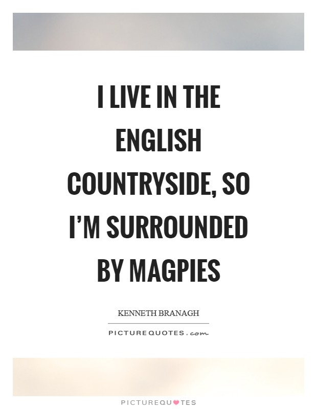 I live in the English countryside, so I'm surrounded by magpies Picture Quote #1