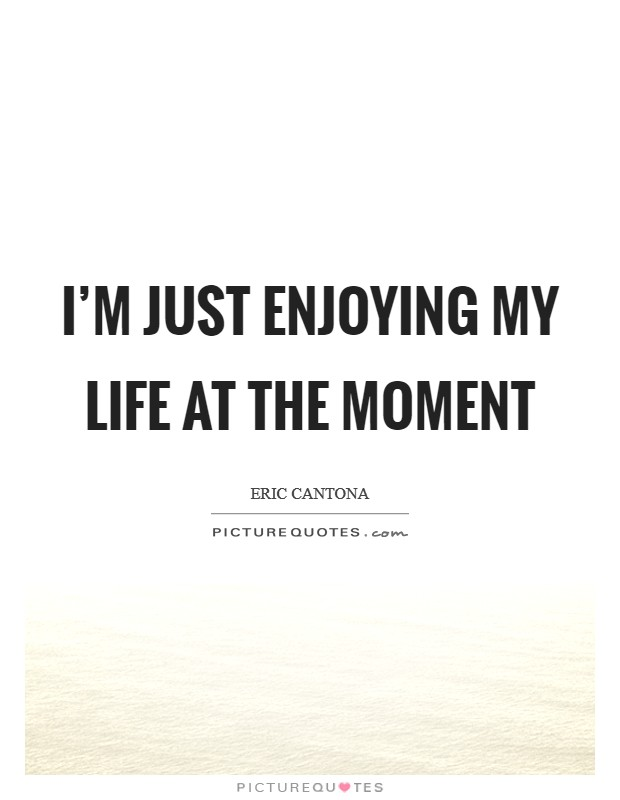 I'm just enjoying my life at the moment Picture Quote #1