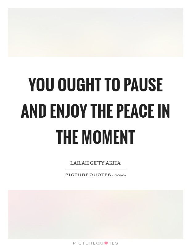 You ought to pause and enjoy the peace in the moment Picture Quote #1