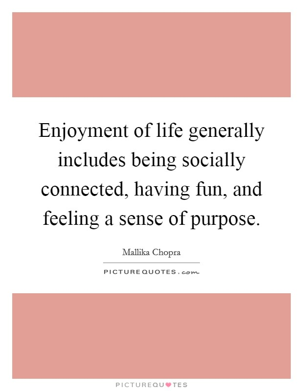 Enjoyment of life generally includes being socially connected, having fun, and feeling a sense of purpose Picture Quote #1