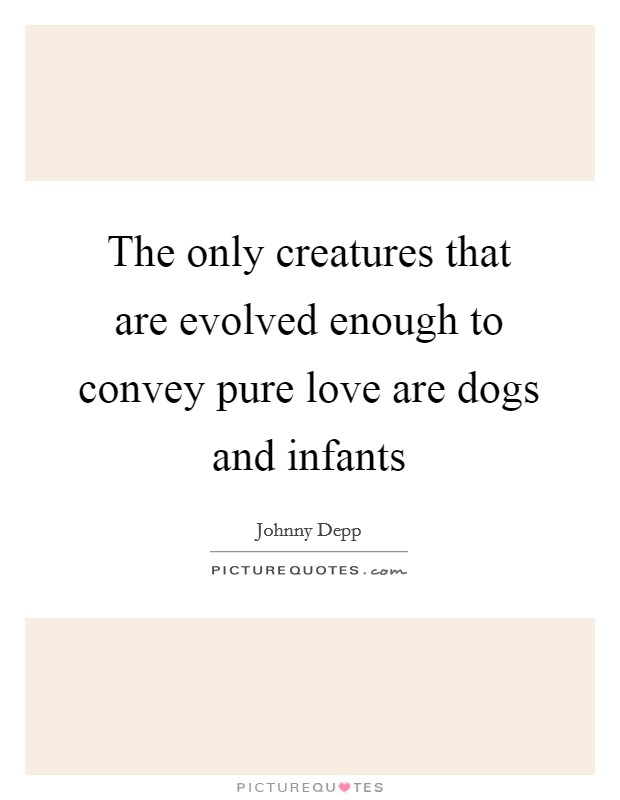 The only creatures that are evolved enough to convey pure love are dogs and infants Picture Quote #1
