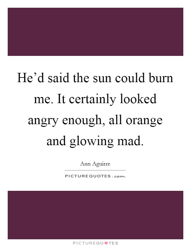 He'd said the sun could burn me. It certainly looked angry enough, all orange and glowing mad Picture Quote #1