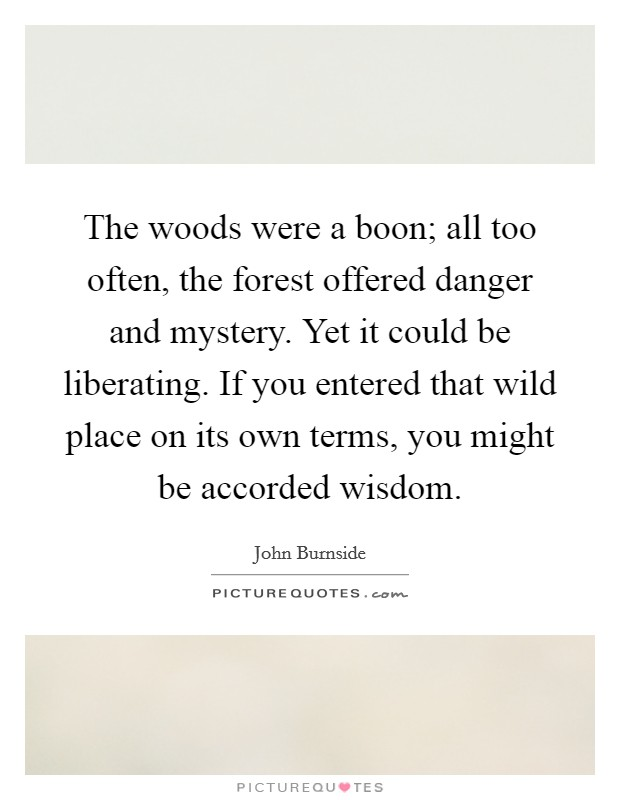 The woods were a boon; all too often, the forest offered danger and mystery. Yet it could be liberating. If you entered that wild place on its own terms, you might be accorded wisdom Picture Quote #1