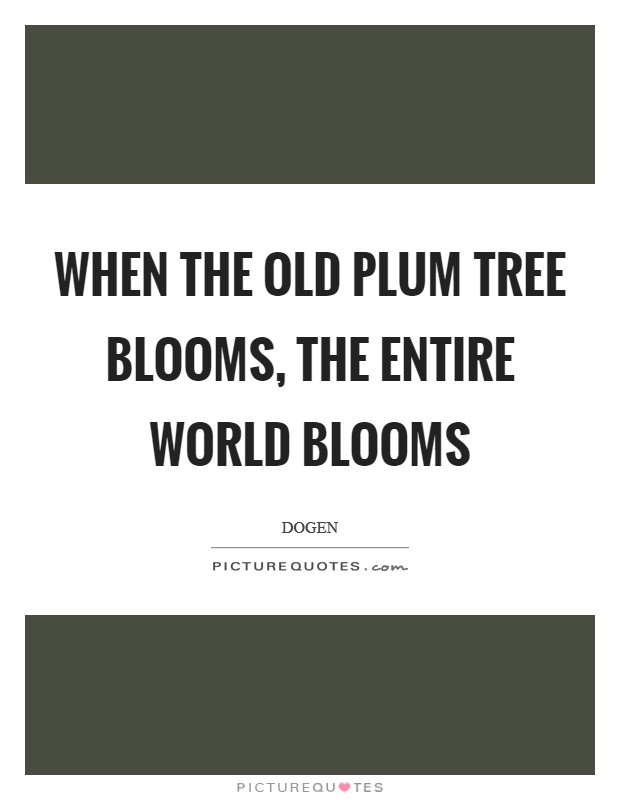 When the old plum tree blooms, the entire world blooms Picture Quote #1