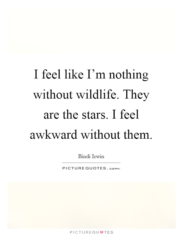 I feel like I'm nothing without wildlife. They are the stars. I feel awkward without them. Picture Quote #1