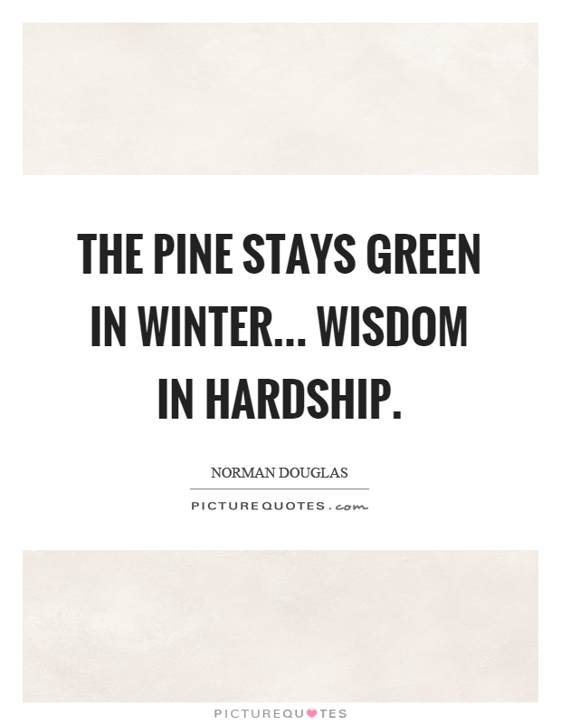 The pine stays green in winter... wisdom in hardship Picture Quote #1