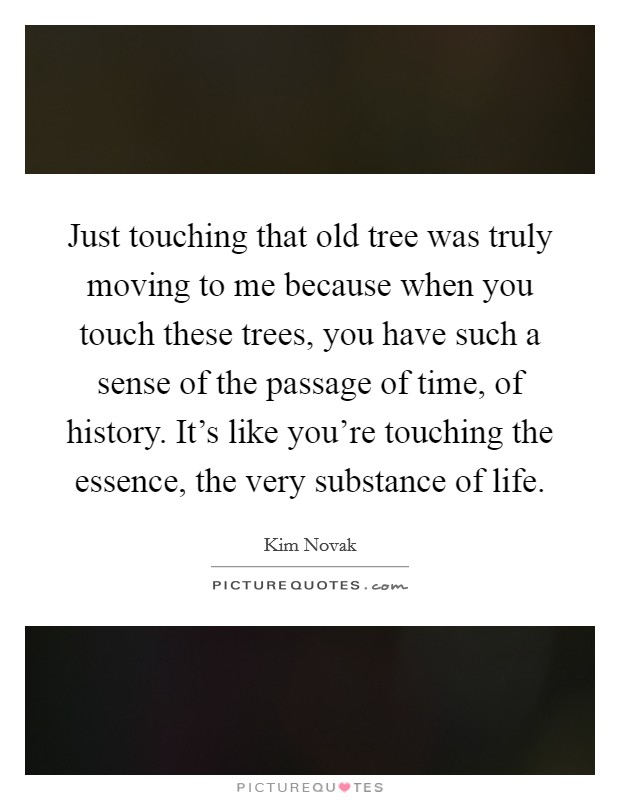 Just touching that old tree was truly moving to me because when you touch these trees, you have such a sense of the passage of time, of history. It's like you're touching the essence, the very substance of life Picture Quote #1