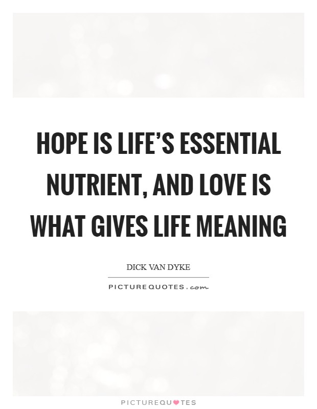 Hope is life's essential nutrient, and love is what gives life meaning Picture Quote #1